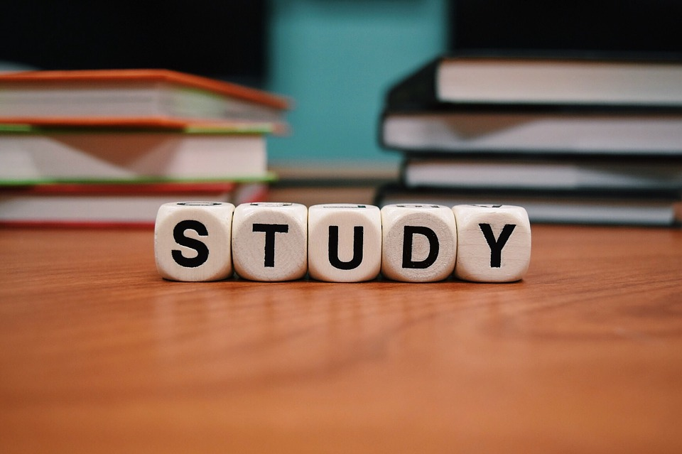 Study, School Learn, Education, Studying, Book